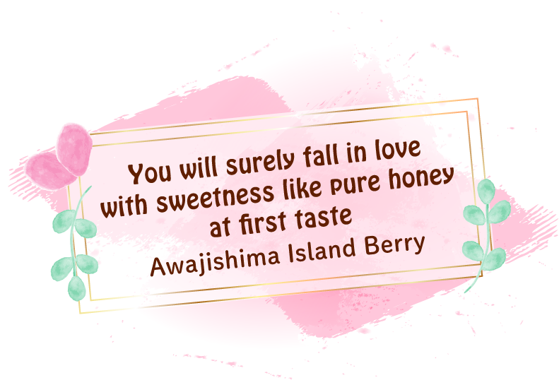 You will surely fall in love with sweetness like pure honey at first taste